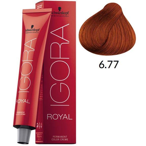 igora-677